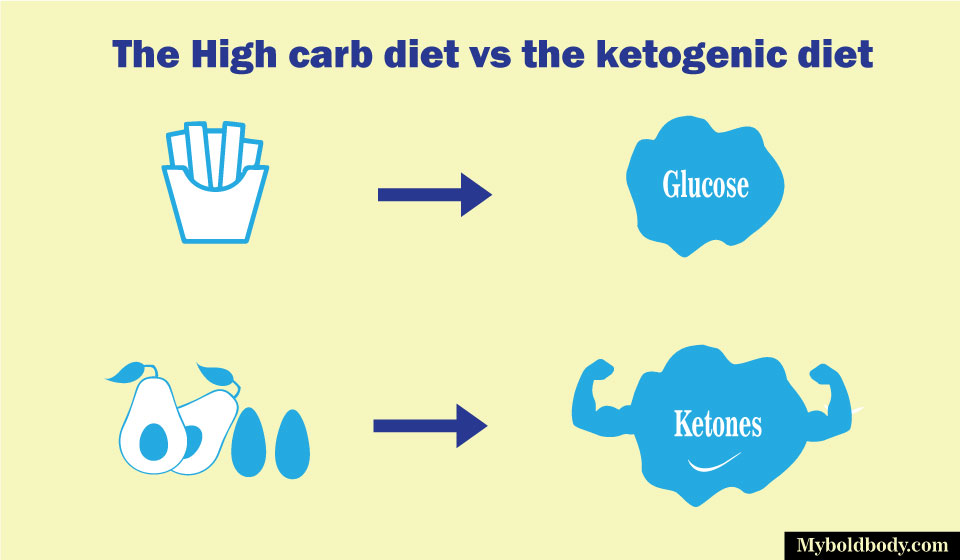 mechanism of high carb vs ketogenic diet