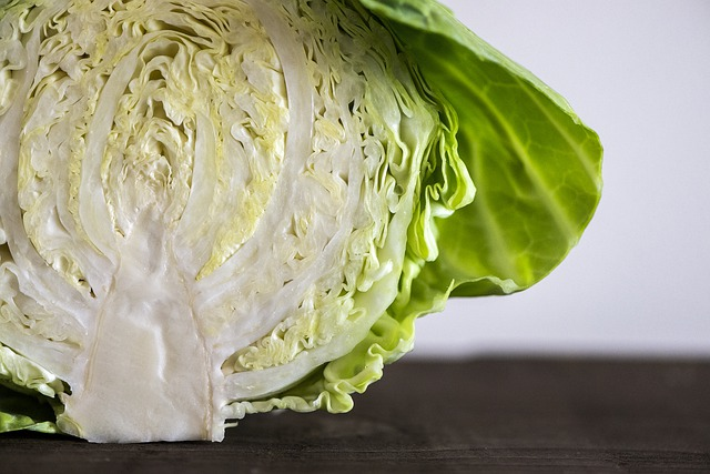 Cabbage low carb veggie