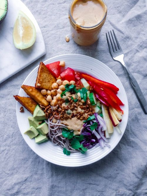 Protein Power Noodle Bowls